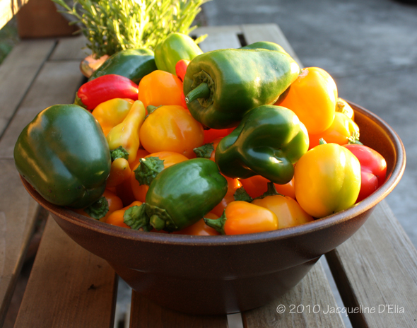 peppers-2010-fall