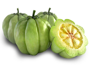 what-is-garcinia2